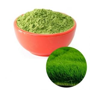 Bột cỏ lúa mì